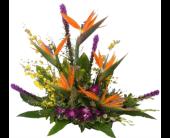 Stuart Flowers - Tropical Paradise Supreme - Flowers By Susan
