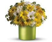 Teleflora's Hello Sunshine in Cairo NY, Karen's Flower Shoppe