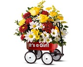 Teleflora's Baby's First Wagon - Girl in Nationwide MI, Wesley Berry Florist, Inc.