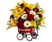 Teleflora's Baby's First Wagon - Girl - Deluxe in Ammon ID, Petal Passion