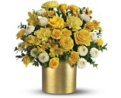 Teleflora's Golden Sunshine Bouquet in Aston PA, Wise Originals Florists & Gifts