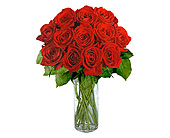 12 Red Long Stem Roses in Pleasanton TX, Pleasanton Floral