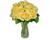 12 Yellow Long Stem Roses in Pleasanton TX, Pleasanton Floral