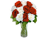 12 Red & White Long Stem Roses in Pittsburgh PA, Cindy Esser's Floral Shop