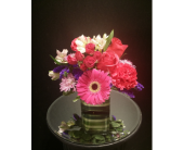 Pink Bliss in Houston TX, Clear Lake Flowers & Gifts