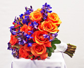 Orange and Blue Paradise in Kalamazoo MI, Ambati Flowers