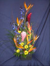 Tropical Love in Sun City Center FL, Sun City Center Flowers & Gifts, Inc.