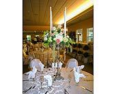Summer Wedding in Lansing, Michigan, Hyacinth House