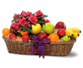 Plant and Fruit Basket in Charlotte NC, Starclaire House Of Flowers Florist