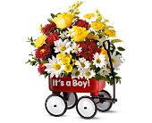 Austin Flowers - Baby''s First Wagon - Freytag's Northwest Florist