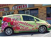 The Future of Today Go Green in St. Petersburg FL, Hamiltons Florist