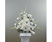Pedestal Arrangement in Arlington TX, H.E. Cannon Floral & Greenhouses, Inc.