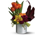 Teleflora's Top Chef Kitchen Connoisseur in Maple ON, Jennifer's Flowers & Gifts