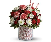 Teleflora's Holiday Surprise Bouquet in San Antonio TX, Flowers By Grace