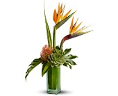 Teleflora's Birds of Beauty in Greenwood Village CO, DTC Custom Floral