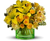 You are My Sunshine by Teleflora - Deluxe in Palm Coast FL, Blooming Flowers & Gifts