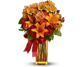 Teleflora's Orange Crush in Charlotte NC, Starclaire House Of Flowers Florist