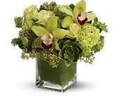 Teleflora's Rainforest Bouquet -  Deluxe in Bothell WA, The Bothell Florist