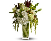 Teleflora's Nature's Kiss in Traverse City MI, Cherryland Floral & Gifts, Inc.