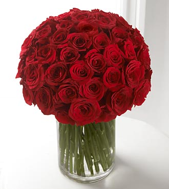 Amour - 48 Red Roses in Hunt Valley MD, Hunt Valley Florals & Gifts