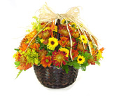 Raimondi's Mum's the Word! in Baltimore MD, Raimondi's Flowers & Fruit Baskets