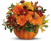 Teleflora's Somethin' Pumpkin in Bismarck ND, Dutch Mill Florist, Inc.