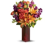 Teleflora's Autumn in New York in Edmonton AB, Petals For Less Ltd.