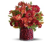 Teleflora's Cranberry Surprise, picture