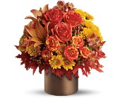 Teleflora's Color-fall in Ormond Beach FL, Simply Roses