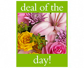 Deal of the Day Bouquet in Harlan KY, Coming Up Roses