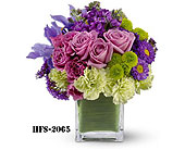 Norwalk in Fairfield CT, Town and Country Florist