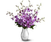 Teleflora's Orchid Reflections in Kennebunk ME, Blooms & Heirlooms ��