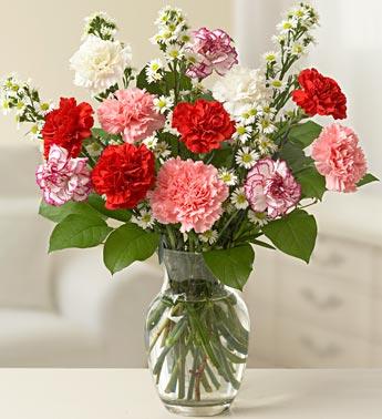 One Dozen Carnations Arranged in Vase