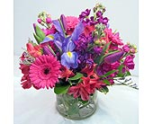 Vibrant Vase in Lower Gwynedd PA, Valleygreen Flowers and Gifts