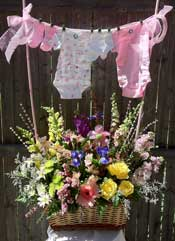 BABY  GIRL CLOTHES LINE by Rubrums in Ossining NY, Rubrums Florist Ltd.