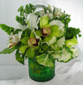 GOIN'' GREEN by Rubrums in Ossining NY, Rubrums Florist Ltd.