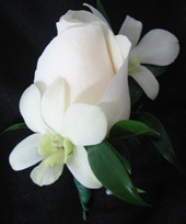 WHITE ROSE/ORCHID BOUTONNIERE in Ossining NY, Rubrums Florist Ltd.