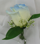 BLUE TIPPED WHITE ROSE BOUTONNIERE in Ossining NY, Rubrums Florist Ltd.