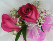 FUSCHIA ROSE CORSAGE in Ossining NY, Rubrums Florist Ltd.