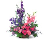 Garden Fresh Blooms in Orlando FL, Colonial Florist