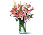 Lovely Lilies in San Mateo CA, Blossoms Flower Shop