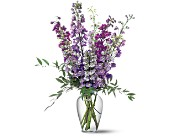 Delphinium Dreams in Crossett AR, Faith Flowers & Gifts