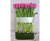 Tulips are Zen in Los Angeles CA, Floral Designs by Dave's Flowers
