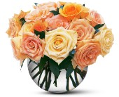 Perfect Pastel Roses in Milford MA, Francis Flowers, Inc.