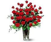 Three Dozen Red Roses in Springfield, Missouri, House of Flowers Inc.