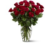 Two Dozen Red Roses in Boise ID, Blossom Boutique