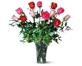 A Dozen Multi-Colored Roses in Lake Worth FL, Lake Worth Villager Florist