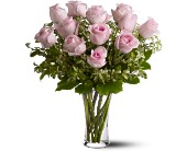 A Dozen Pink Roses in The Woodlands TX, Botanical Flowers and Gifts