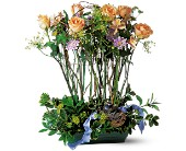 Rose Topiary in Saraland AL, Belle Bouquet Florist & Gifts, LLC
