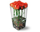 Orange Roses with River Rocks in Houston TX, Village Greenery & Flowers